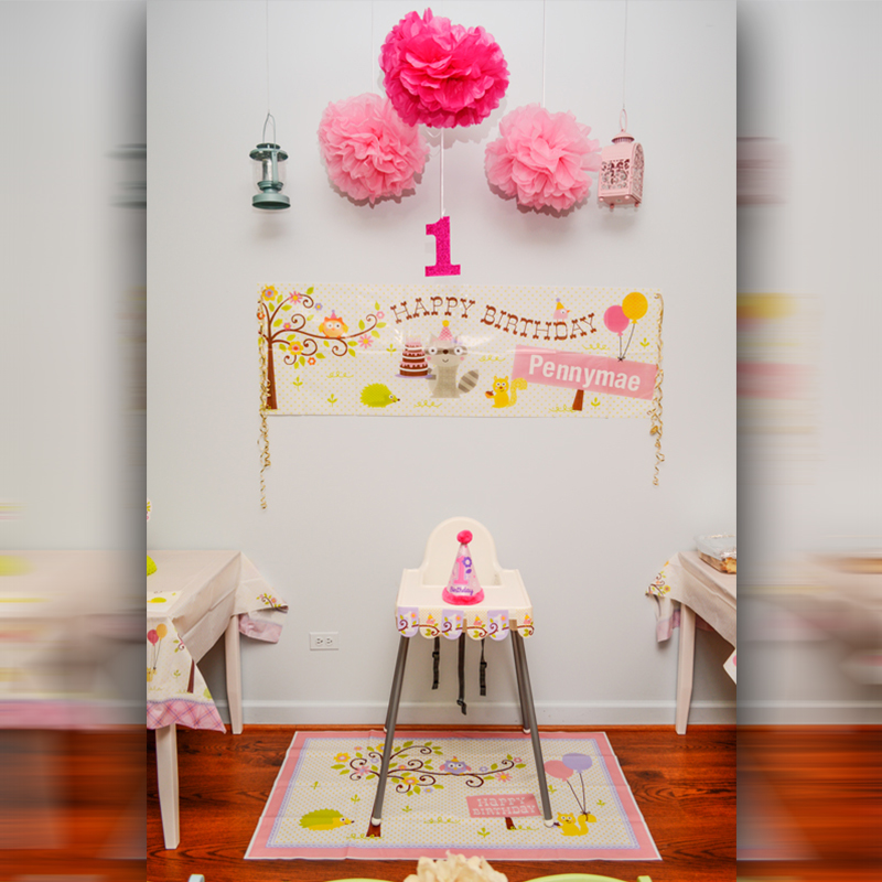 party venue Chicago, princess parties Chicago, babies first birthday
